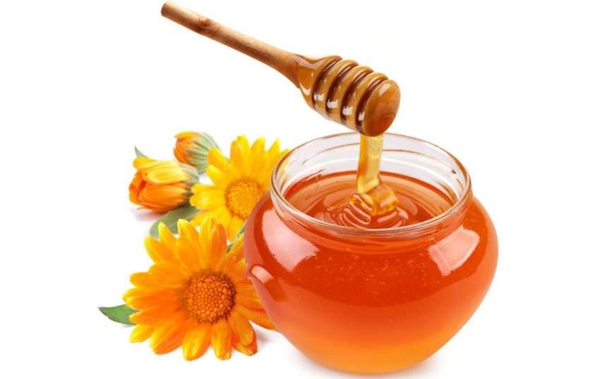 Целебный мед | Собственная пасека