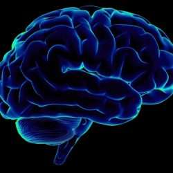 Отечественные исследования в области диагностики умственного развития. К/р по психодиагностике
