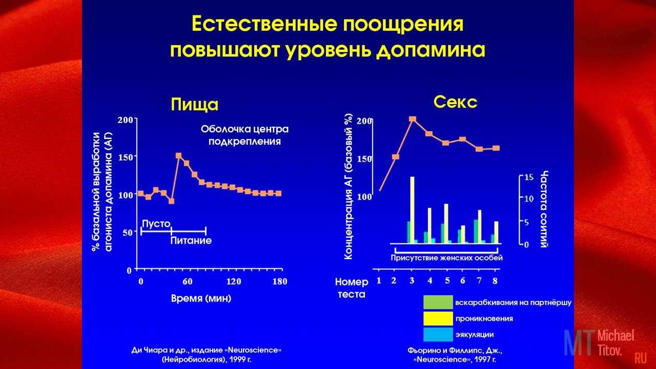 Давайте посмотрим график как естественные поощрения вызывают повышение уровня дофамина