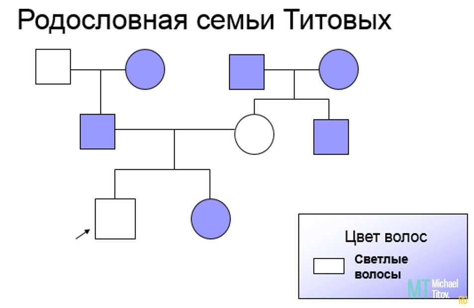 Родословная семьи Титовых