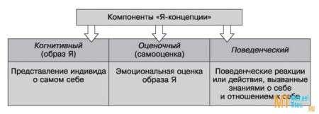 Рис. 3. Компоненты «Я-концепции»