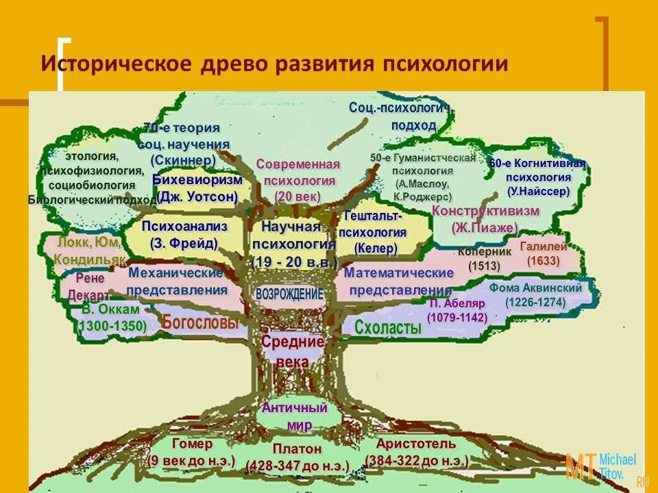 Историческое древо развития психологии